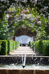 Fountain in the walled rose garden at Mottisfont. Rosa 'Adélaïde d'Orléans' on the arches beyond. White bench seat focal point