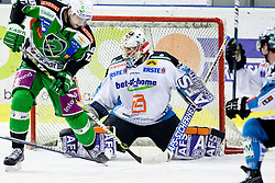 Petr Sachl (HDD Tilia Olimpija, #12) vs Alex Westlund (EHC Liwest Linz, #32) during ice-hockey match between HDD Tilia Olimpija and EHC Liwest Black Wings Linz in 51st Round of EBEL league, on Februar 5, 2012 at Hala Tivoli, Ljubljana, Slovenia. (Photo By Matic Klansek Velej / Sportida)