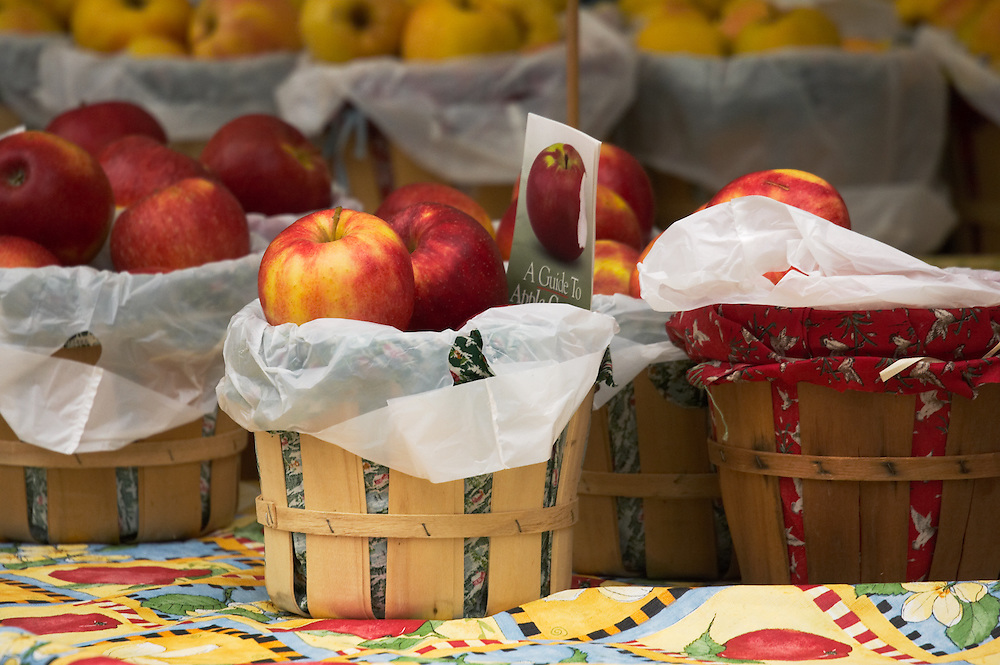 the new fall apple crop at the farmers market