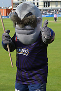 Alfred the Gloucestershire mascot during the NatWest T20 Blast South Group match between Gloucestershire County Cricket Club and Middlesex County Cricket Club at the Bristol County Ground, Bristol, United Kingdom on 15 May 2015. Photo by Alan Franklin.