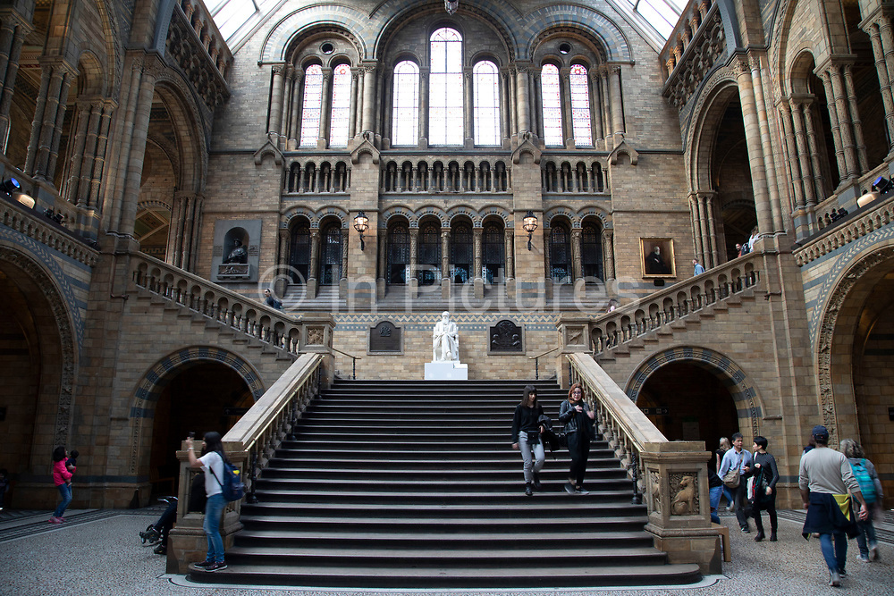 Steps up to the statue of Charles Darwin in the Hintze Hall, main space at the Natural History Museum in London, England, United Kingdom. The museum exhibits a vast range of specimens from various segments of natural history. The museum is home to life and earth science specimens comprising some 80 million items within five main collections: botany, entomology, mineralogy, paleontology and zoology. The museum is a centre of research specialising in taxonomy, identification and conservation.