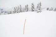 Orange pickets mark the safe (avalanche free) winter route to the Elfin Lakes Hut in Garibaldi Provincial Park, British Columbia, Canada.