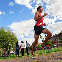 103114  Adron Gardner/Independent<br /> <br /> Page Sand Devil Jeffery Miller leads comfortably in the Arizona sectional cross country tournament in Holbrook Friday.