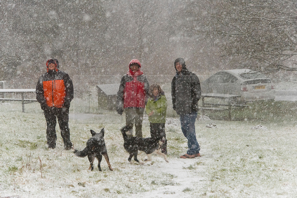 © Licensed to London News Pictures. 22/01/2021. Llanwrtyd Wells , Powys, Wales, UK. People get caught out in a blizzard at the Sugar Loaf near Llanwrtyd Wells in Powys, Wales, UK. Photo credit: Graham M. Lawrence/LNP
