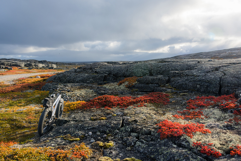 Fall in the tundra.