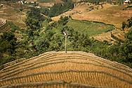 Hidden valley of La Pan Tan Village, Mu Cang Chai District, Yen Bai Province, Northern Vietnam, Southeast Asia