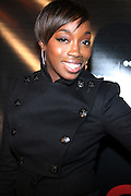 Estelle at The Q-Tip Album release party sponsored by Target held at The Bowery Hotel in NYC on October 28, 2008