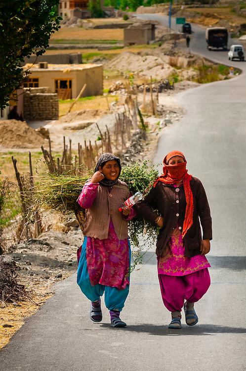 Mulbekh, Ladakh, Jammu and Kashmir State, India.
