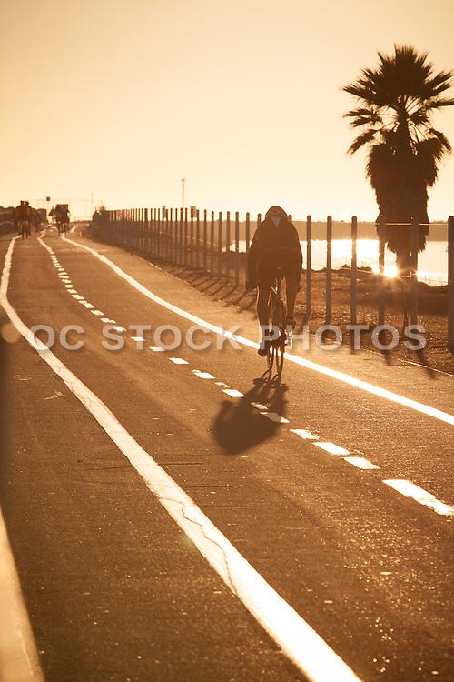 Active Living at the Harbor in Marina Del Rey California