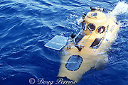 Delta research submersible, Biscayne National Park, Florida, USA ( Western Atlantic Ocean )
