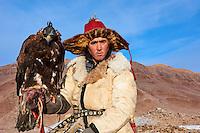 Mongolie, province de Bayan-Olgii, Arman, chasseur à l'aigle Kazakh, chasse à l'aigle royal dans les monts Altai // Mongolia, Bayan-Olgii province, Arman, Kazakh eagle hunter, Golden Eagle hunting in Altai mountains