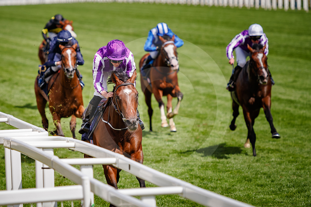 Kew Gardens (Ryan Moore) wins The Queen's Vase Gr.2 at Royal Ascot, 20/06/2018, photo: Zuzanna Lupa