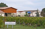 Vineyard. Winery building. Chateau Grand Corbin Despagne, Saint Emilion Bordeaux France