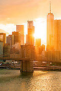 View of Freedom Tower at Sunset with the Brooklyn Bridge and Manhattan Financial District, New York City.