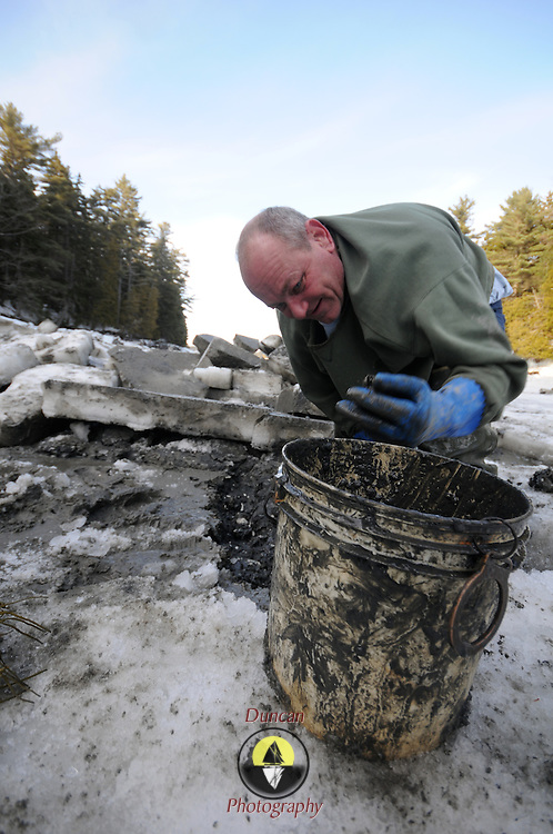 """2/17/11 -- HARPSWELL, Maine. Michael Bernier of Harpswell digs clams in Quahog Bay on Thursday afternoon. He and a small group of diggers cut through the ice at low water to dig here. .Quahog Bay was reopened for digging on Feb 11, 2011 after many years of closure, according to Department of Marine Resources Biotoxin Monitoring Manager, Darcie Couture. She wrote, """"This area had been closed for many years due to failing water quality, caused by bacterial pollution. A serious pollution source was recently identified and remediated.  The area will close in June for the summer, because unfortunately, this area, like many others on the Maine coast, suffer from the increased pressure of a seasonal summer population, which negatively impacts water quality, and results in many of our shellfish resources remaining closed to harvest during that time."""" Photo by Roger S. Duncan."""