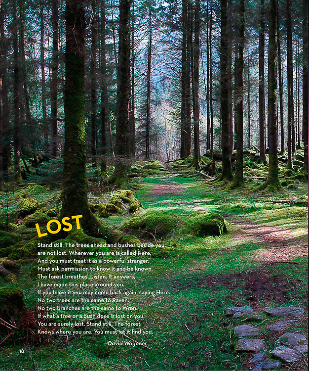 Gougane Barra National Park, published in a National Geographic Book of Nature Poetry