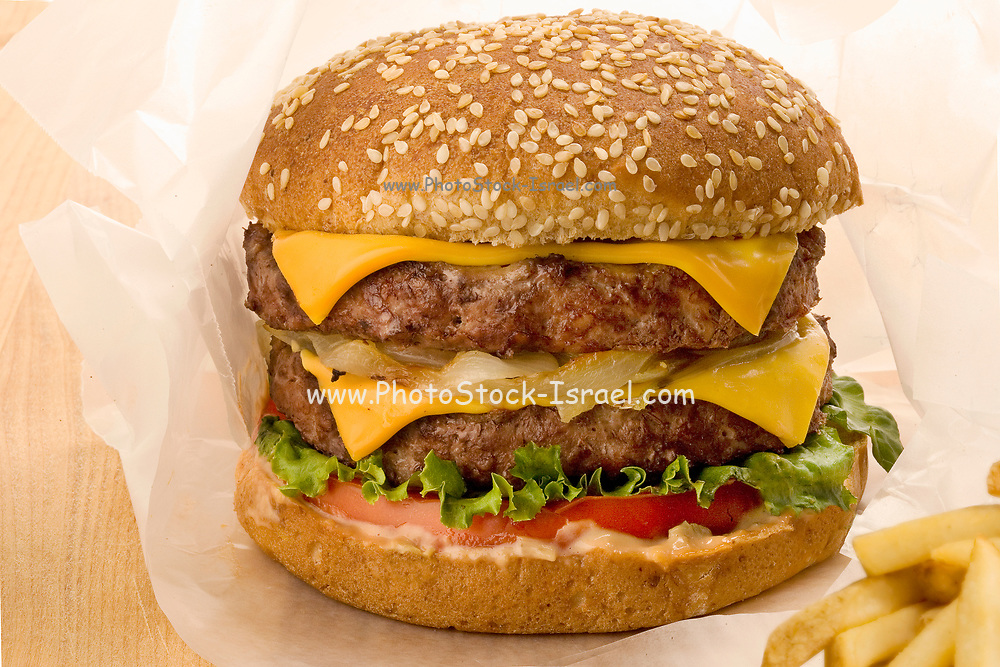 Double Cheeseburger in paper with french fries