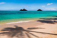 Palm tree shadows on Lanikai Beach, Kailua Bay, Oahu, Hawaii. Mokulua Islands in background