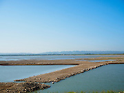 01 JULY 2015 - NONG BUA, LOPBURI, THAILAND:  The recreational area at Pa Sak Dam, an agricultural reservoir. All of the land is normally submerged. Central Thailand is contending with drought. By one estimate, about 80 percent of Thailand's agricultural land is in drought like conditions and farmers have been told to stop planting new acreage of rice, the area's principal cash crop. Water in reservoirs are below 10 percent of their capacity, a record low. Water in some reservoirs is so low, water no longer flows through the slipways and instead has to be pumped out of the reservoir into irrigation canals. Farmers who have planted their rice crops are pumping water out of the irrigation canals in effort to save their crops. Homes have collapsed in some communities on the Chao Phraya River, the main water source for central Thailand, because water levels are so low the now exposed embankment is collapsing. This is normally the start of the rainy season, but so far there hasn't been any significant rain.    PHOTO BY JACK KURTZ