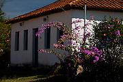 Sao Roque de Minas_MG, Brasil..Parque Nacional Serrra da Canastra em Sao Roque de Minas, Minas Gerais...Serra da Canastra National Park in Sao Roque de Minas, Minas Gerais...Foto: LEO DRUMOND / NITRO