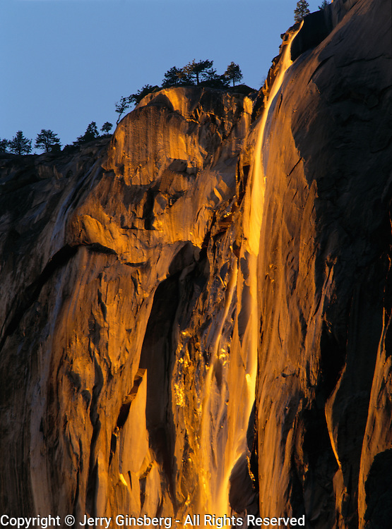 Horsetail Falls seems to glow from within as it tumbles down the side of El Capitan in evening light in Yosemite National Park, CA.