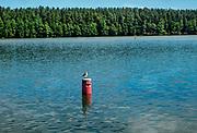Letni wypoczynek nad jeziorem Necko, Augustów, Polska<br /> Summer rest at Necko Lake, Augustów, Poland