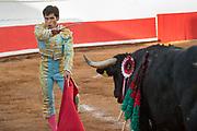 Mexican bullfighter Francisco Martinez performs with a bull at the Plaza de Toros March 3, 2018 in San Miguel de Allende, Guanajuato, Mexico.