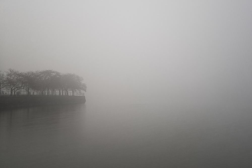 A foggy morning at the Washington, D.C. Tidal Basin.