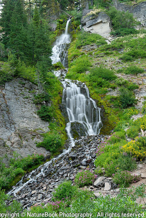 The diverse scenery around Crater Lake National Park includes this beautiful waterfall, flowing down a rocky bed, surrounded by wildflowers
