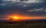 Sunrise over Maasai Mara, Kenya.