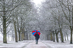 © Licensed to London News Pictures. 14/01/2021. Leeds UK. A man walks through the snow this morning at Temple Newsam park in Leeds after heavy snowfall this morning in Yorkshire. Photo credit: Andrew McCaren/LNP