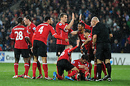Cardiff city players celebrate after Peter Whittingham (on ground) scores the 1st goal.  Barclays Premier league, Cardiff city v West Bromwich Albion at the Cardiff city Stadium in Cardiff, South Wales on Saturday 14th Dec 2013. pic by Andrew Orchard, Andrew Orchard sports photography.