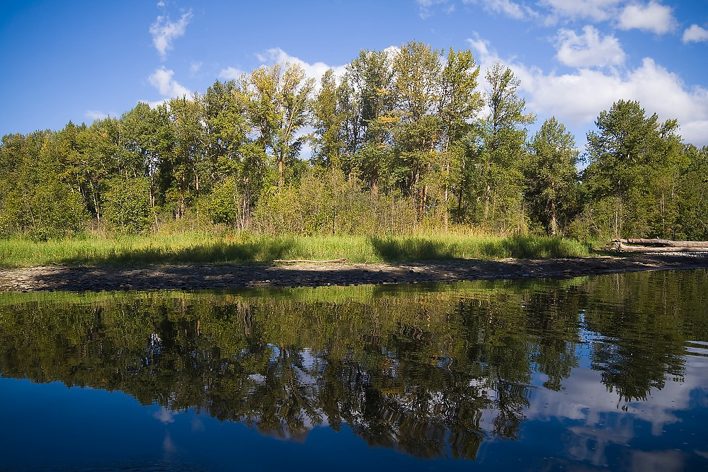 Trees and sky are reflected in the tranquil water of the Yakima River in Eastern Washington.