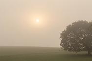 Morning fog in Goshen, N.Y., on Sept. 25, 2020.