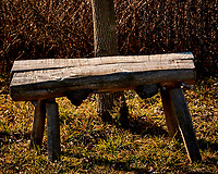 Wood Bench. Late autumn monthly Sunday walk in the park. Hobler Park, Montgomery Township, New Jersey. Image taken with a Nikon 1 V3 camera and 70-300 mm VR lens.