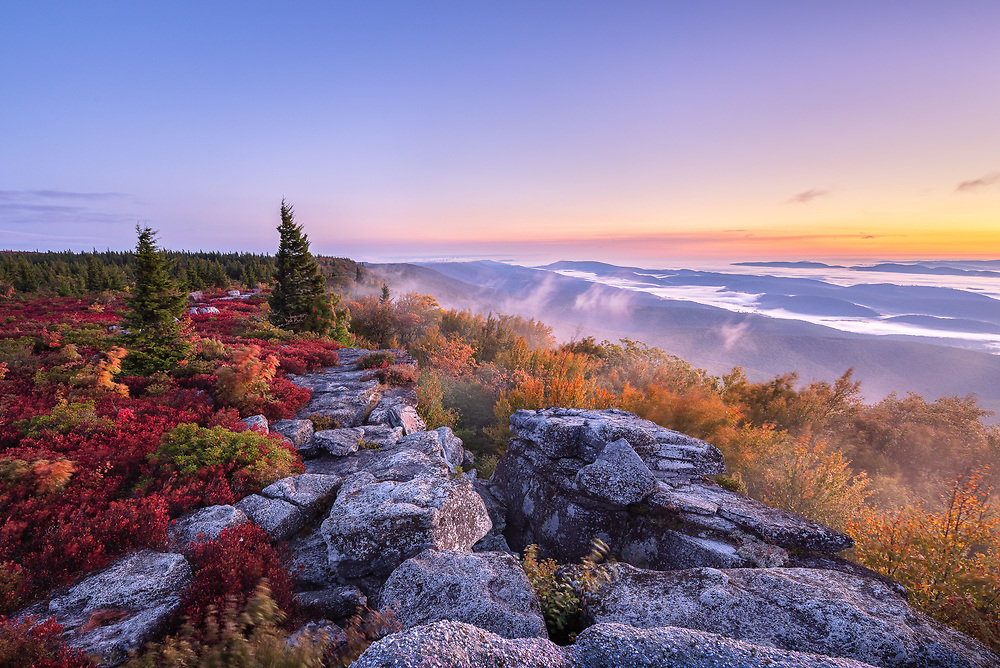 Twilight begins to break and the early sun glows below the horizon as the fog lifts above the distant mountains as viewed from the top of Bear Rocks Preserve, West Virginia in Autumn.