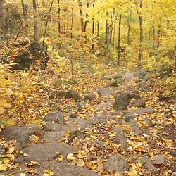 Twin Mountain, NH. Rock stairs on the Sugarloaf Trail in the White Mountain National Forest.  Fall.