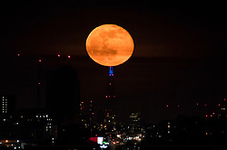 © Licensed to London News Pictures. 29/03/2021. LONDON, UK.  A 99% waning gibbous moon rises over the The Shard in central London.  This month's full moon is known as the Worm Moon according to the Old Farmer's Almanac, recognising that earthworms appear as the soil warms in spring. In addition, it is a Paschal Full Moon, being the first full Moon to occur after the spring equinox as well as a super moon.  Photo credit: Stephen Chung/LNP
