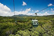 Gondola cabin of Skyrail over Rainforest, Barron Gorge National Park, Queensland, Australia