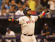 MLB: SEP 12 Red Sox at Rays. David Ortiz of the Red Sox, Hits his 500th Home Run in the 5th Inning and celebrates with his team mates.