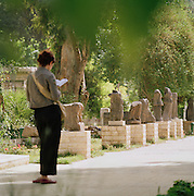 A woman reading in the park, at the grounds of the National Museum of Damascus, Damascus, Syria