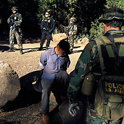 """The national forests in California and across the nation are increasingly being used to grow marijuana. The clandestine grows are shielded by tree canopies and are often close to, if not actually inside, recreational usage areas so that the growers can appear to be normal recreational users. A task force comprised of Sheriff deputies, US Forest Service Agents and Dept. of Justice agents raided a grow in the Tahoe National Forest that yielded 5000 plants in the 2""""-12"""" range and arrested one Mexican national who was tending the grow. Here, task force agents guard the man who said he was from Michoacan, Mexico."""