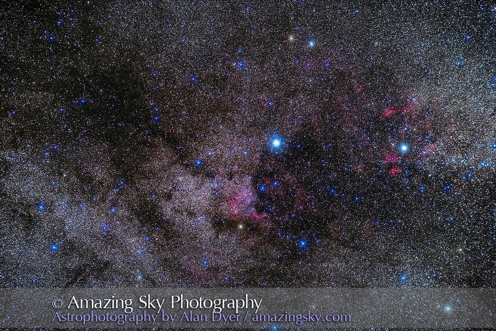 The region of the summer Milky Way in northern Cygnus containing a rich collection of bright nebulas: the North America Nebula at centre and the Gamma Cygni complex at right, plus the dark nebulas Le Gentil 3, the Funnel Cloud Nebula at upper left, the Northern Coal Sack at centre, and the finger-like B168 at lower left.  The bright star at centre is Deneb. M39 is at lower left.<br /> <br /> This is a stack of 6 x 3-minute exposures with the 85mm Rokinon lens at f/2.8 and Canon 6D MkII at ISO 800, on the Sky-Watcher Star Adverturer tracker. An additional exposure taken through a Kenko Softon A filter adds the star glows. Taken on a very clear night from home August 1, 2019. The camera was not filter-modified so the red nebulas don't stand out as much as they should.