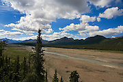 Teklanika River, Denali National Park, from the road running through Denali. There were some distant caribou in the riverbed - but I was told that wolves had been seen here this morning. ..