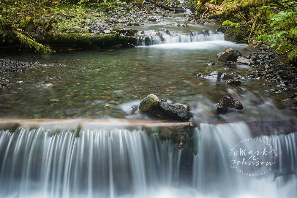 A lovely stream flowing through the Tongass National Forest, Baranof Island, Sitka, Alaska, USA