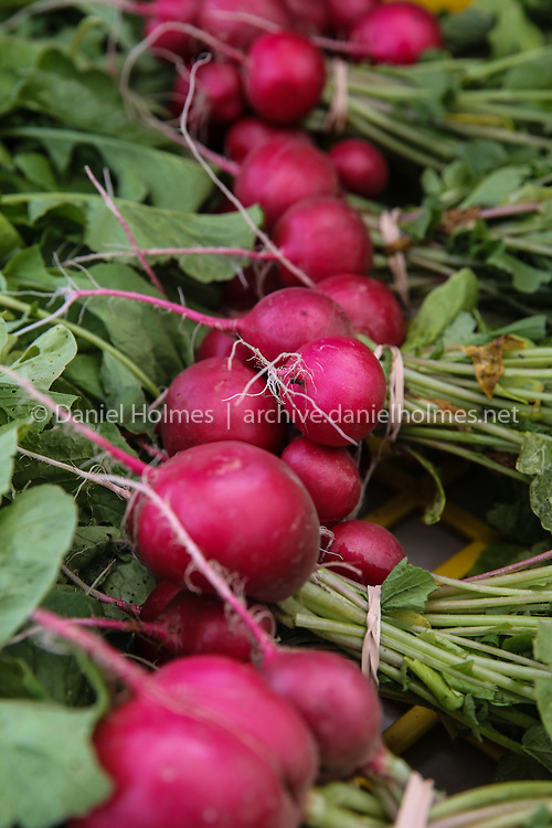 (6/27/20, MAYNARD, MA) Fresh radishes from Brigham Farm, in Concord, for sale during the opening of the Farmers' Market at Mill Pond in Maynard on Saturday. [Daily News and Wicked Local Photo/Dan Holmes]