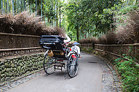 Rickshaw at Chikurin-no-Michi or the Path of Bamboo is long path of bamboo trees in Arashiyama behind Tenryuji Temple. The scene appears frequently on Japanese TV dramas and in Japanese movies,particularly those set in Kyoto.