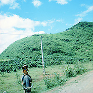 Farmer riding a buffalo on a trail in the area of Sapa