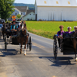 Strasburg, PA - June 19, 2016: Amish using horse drawn wagons on a county road in Lancaster County, PA.