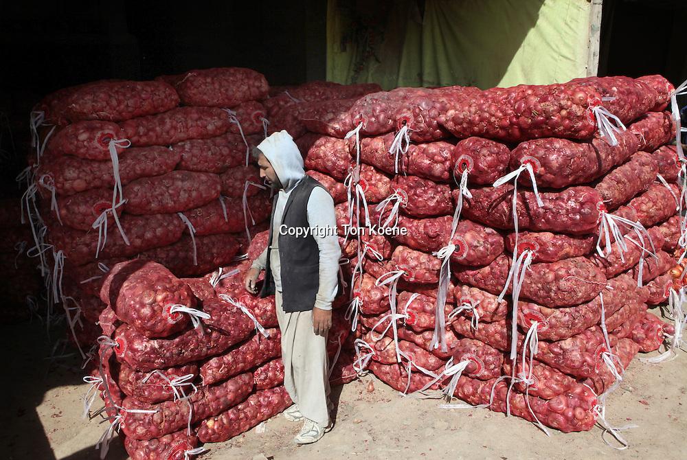 Onion market in Afghanistan